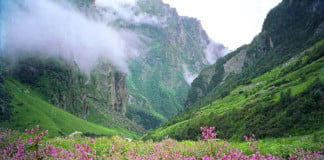 beautiful-scene-in-Himalayas-on-the-trek-to-Valley-of-Flowers