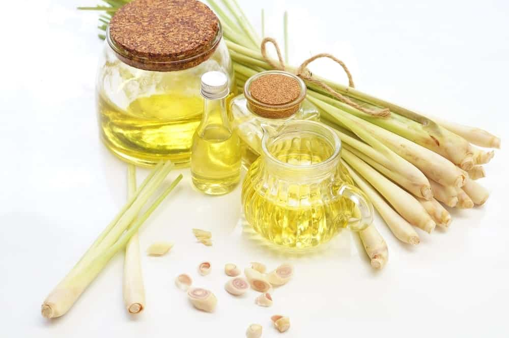 Lemongrass and Rosemary Essential Oil