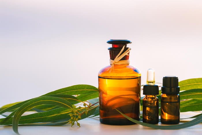 Lemon Eucalyptus Oil for homemade mosquito repellent