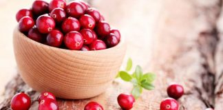 Cranberry nutrition facts and calorie