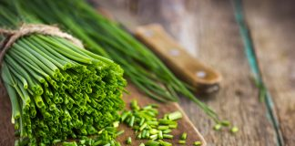 chives nutrition facts and calorie