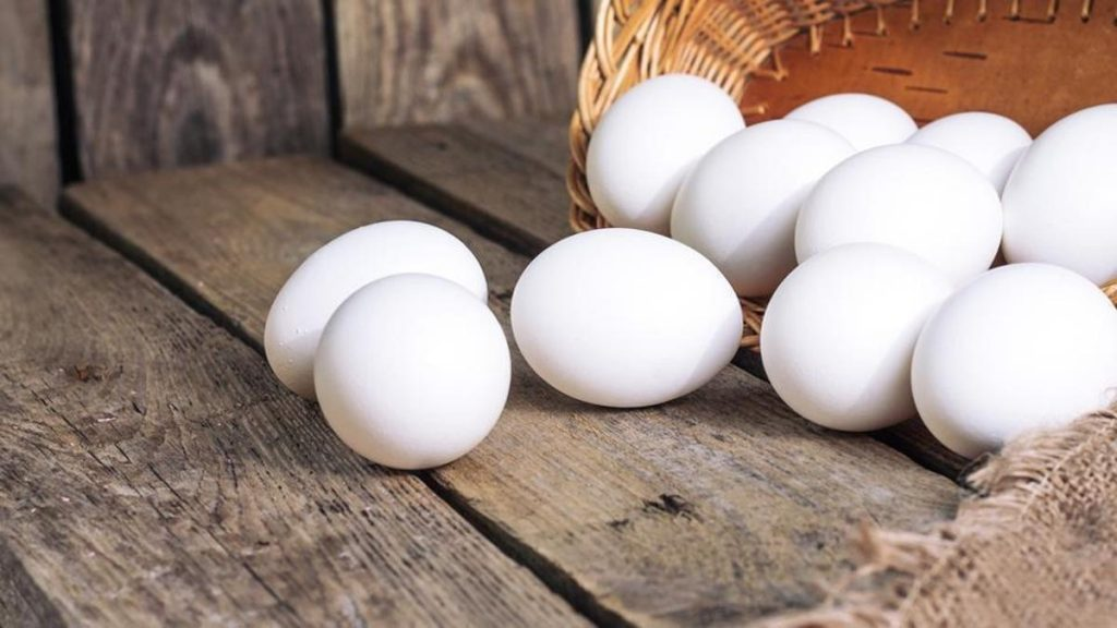 Egg Nutrition facts and calorie