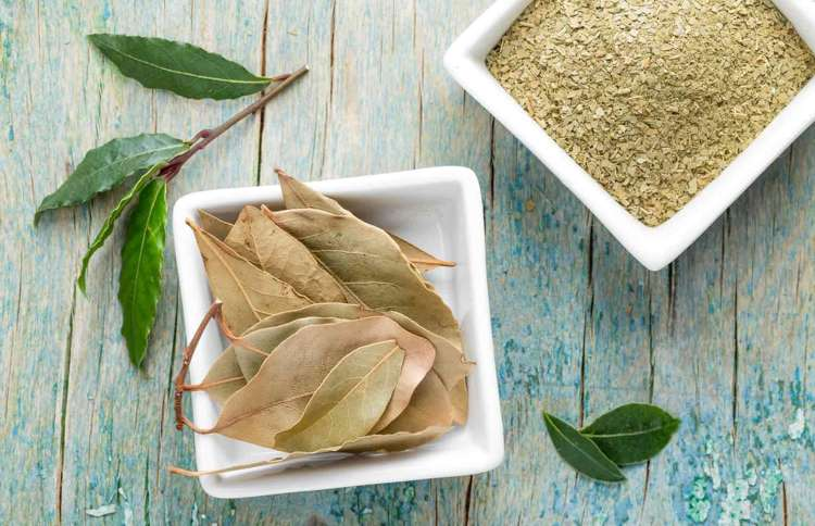 Bay Leaf Nutrition Facts