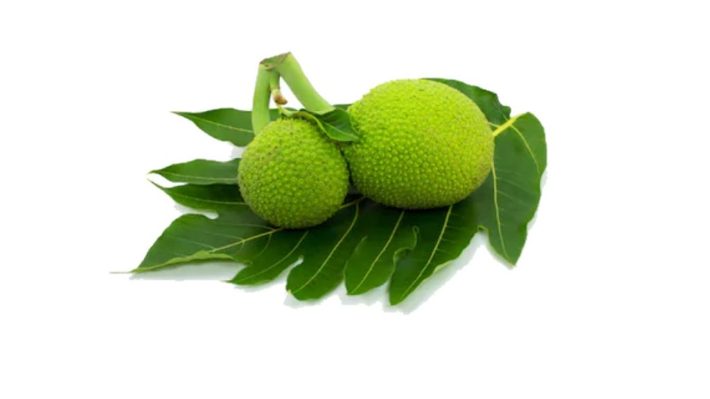 Breadfruit Nutrition Facts