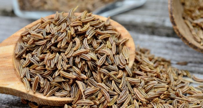Caraway Seed Nutrition Information