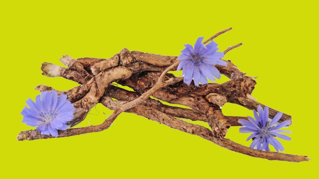 Chicory Root Nutrition Facts
