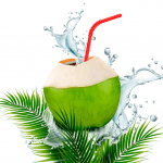 Coconut Water Nutrition Facts and Calorie Information