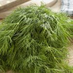 Dill Weed Nutrition Facts and Calorie Information