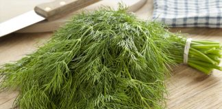 Dill Weed Nutrition Facts