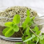Dried Marjoram Nutrition Facts and Calorie Information