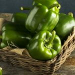 Green Bell Pepper Nutrition Facts and Calorie Information