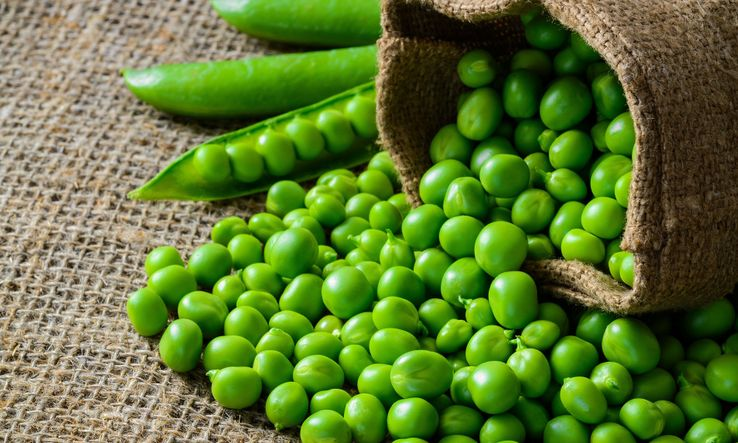 Green peas Nutrition Facts and Calorie Information