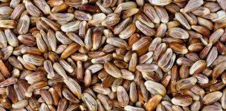 Safflower Seeds Nutrition Facts