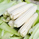 Sweet White Corn Nutrition Facts and Calories Information