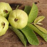 11 Amazing Guava Benefits: Boost Immune System+ Skin Care and More