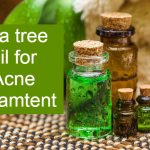 Tea tree oil for Acne : How to use and Does it work?