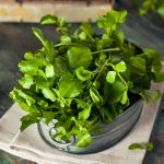 Watercress Nutrition Facts and Calorie Information