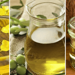 Canola Oil Vs Olive And Coconut Oil : Which Is The Healthier and Taste Better