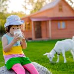 5 Benefits of Goat Milk