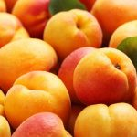 The Health Benefits of Apricots