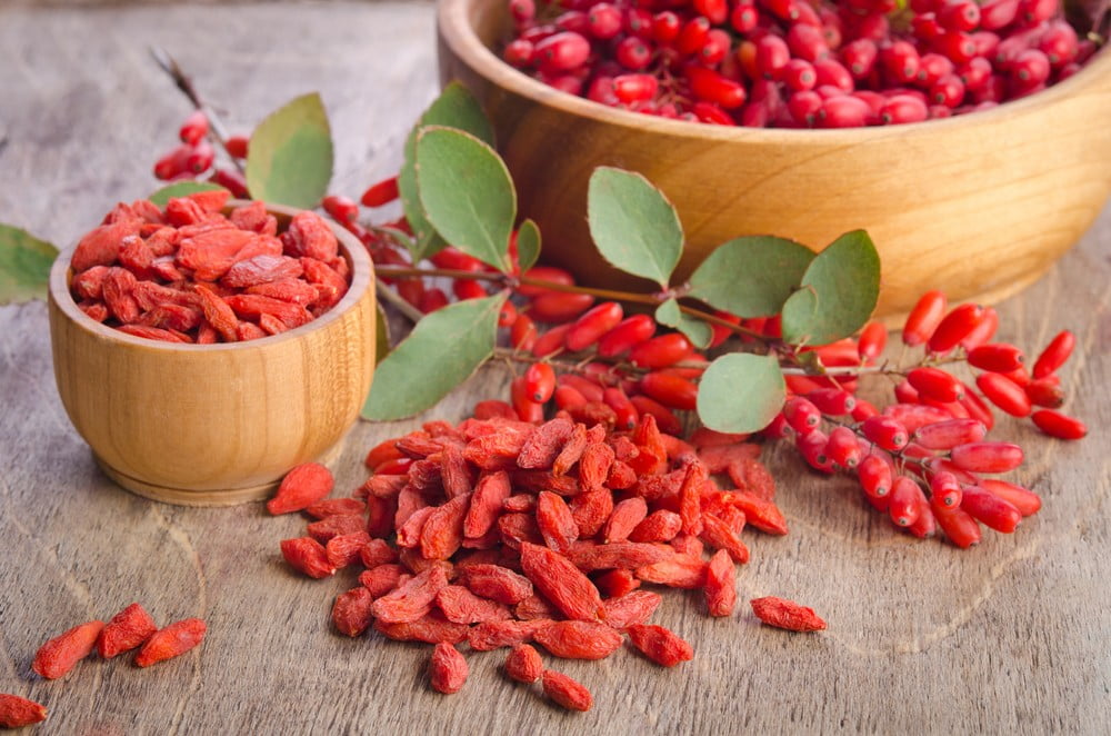 The Surprising Health Benefits of the Goji Berry