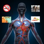 6 Natural Remedies for Improve Blood Circulation