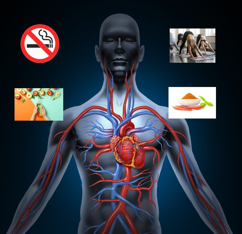 Natural Remedies for Improve Blood Circulation